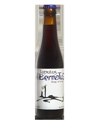 Hibernatus 33cl  - Bière Hivernale