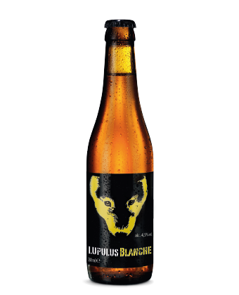 Blanche 33cl - Wheat Beer